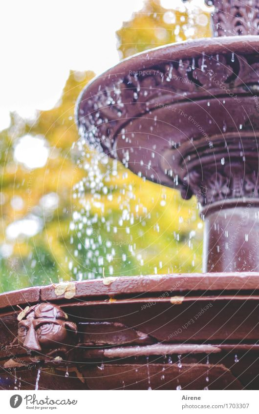 drip catcher Art Sculpture Drops of water Autumn Beautiful weather Park Well Fountain Esthetic Fresh Cold Wet Brown Gold Green Violet Eternity Peace Inspiration