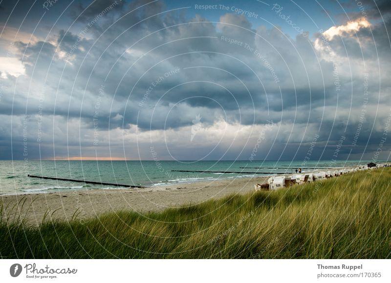 Nature Water Sky Ocean Green Blue Plant Summer Beach Vacation & Travel Grass Spring Sand Landscape Waves Coast