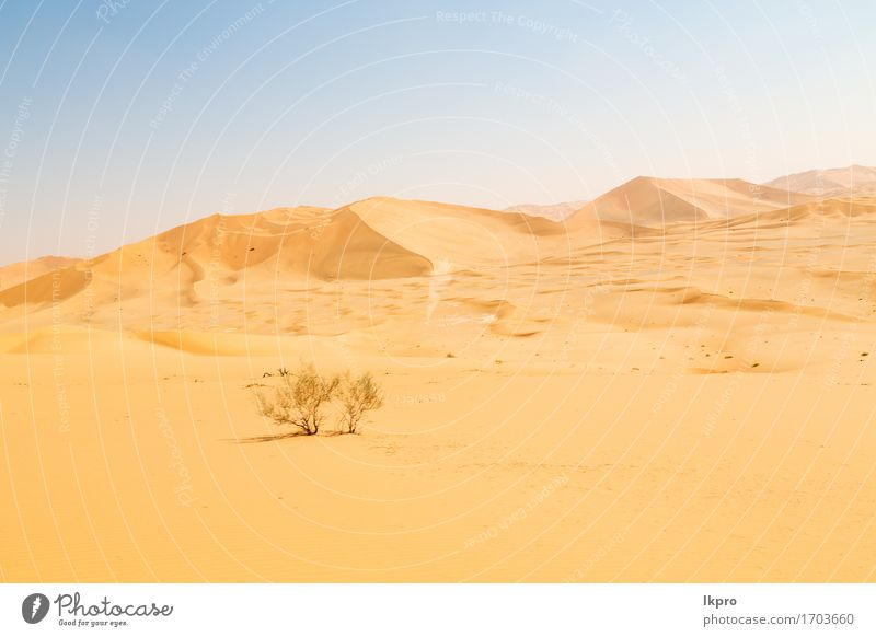d dune in oman old desert rub al khali Sky Nature Vacation & Travel Summer Beautiful White Sun Landscape Loneliness Black Yellow Gray Stone Sand Rock Tourism