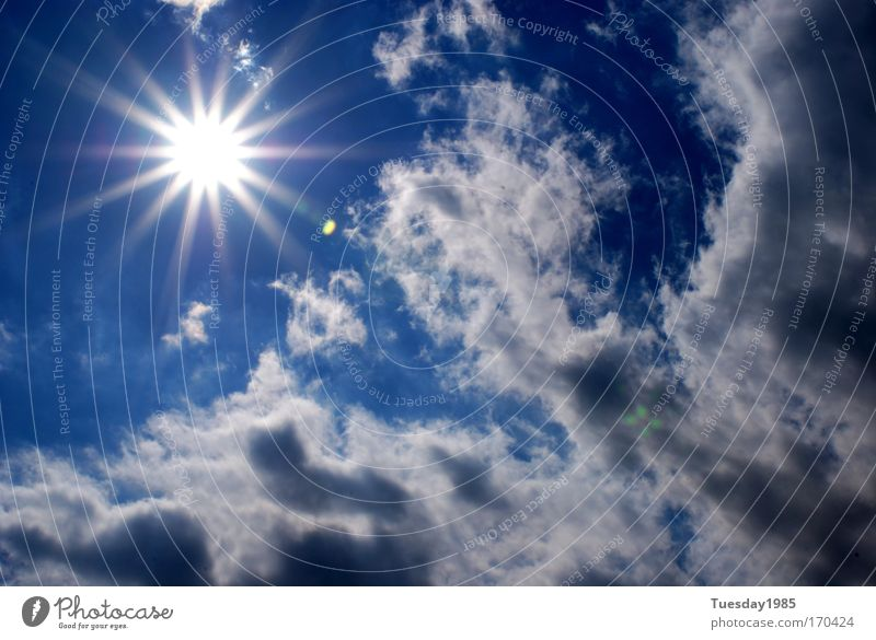 Sunlight Express Sky Clouds Summer Beautiful weather Climate Energy industry Colour photo Exterior shot Light Sunbeam Day