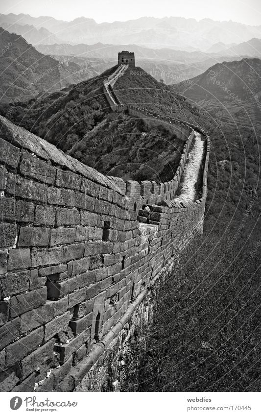 Great Wall of China near Mutianyu Black & white photo Exterior shot Pattern Structures and shapes Copy Space top Day Shadow Central perspective Landscape