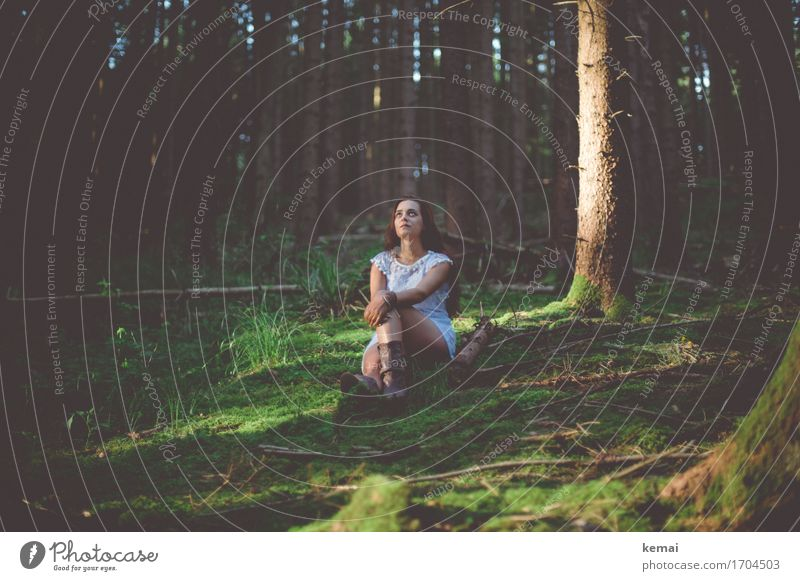 Human being Nature Youth (Young adults) Summer Young woman Green Tree Relaxation Calm Forest 18 - 30 years Adults Life Lifestyle Emotions Feminine