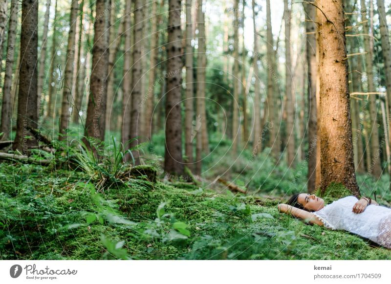Human being Nature Youth (Young adults) Plant Summer Green Young woman Tree Relaxation Calm Forest 18 - 30 years Adults Life Sadness Lifestyle