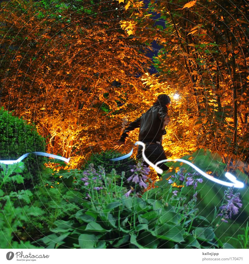 In the fairytale forest Colour photo Multicoloured Exterior shot Experimental Night Light (Natural Phenomenon) Central perspective Looking back Human being