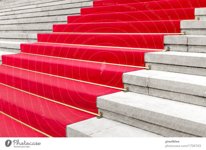 Red carpet I Luxury Elegant Style Carpet Party Event Going out Feasts & Celebrations Culture Shows Concert Opera Opera house Stairs Famousness Success
