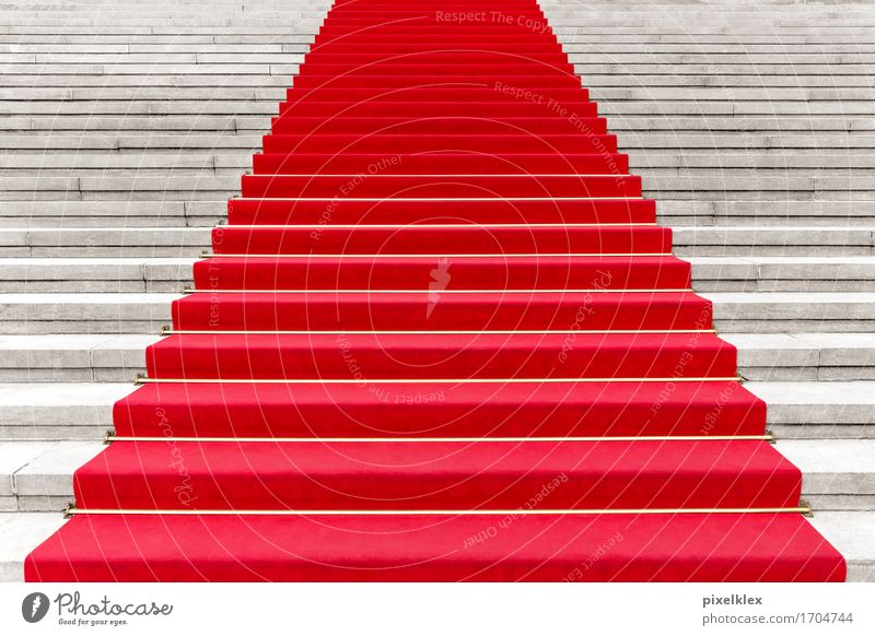 Red carpet II Luxury Elegant Style Carpet Party Event Going out Feasts & Celebrations Culture Shows Concert Opera Opera house Stairs Famousness Success Steps