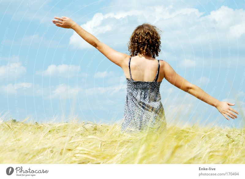 Nature Youth (Young adults) Blue Beautiful Sun Summer Relaxation Feminine Freedom Happy Healthy Woman Dance Field Gold Safety