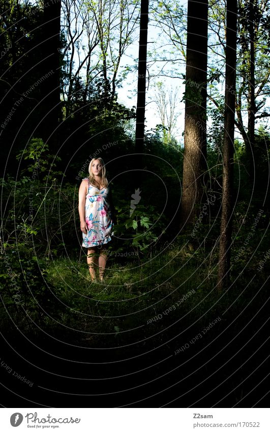 Human being Nature Youth (Young adults) Beautiful Loneliness Forest Dark Feminine Dream Sadness Fear Blonde Adults Small Elegant Environment