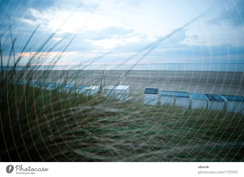 beachfront Colour photo Subdued colour Exterior shot Deserted Copy Space top Evening Twilight Light (Natural Phenomenon) Wide angle Vacation & Travel Trip
