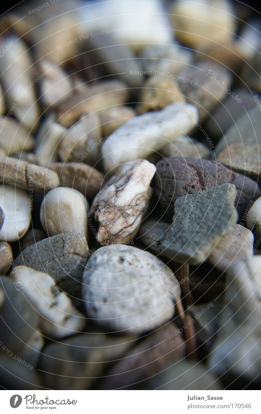 Nature Landscape Environment Stone Elements Macro (Extreme close-up) Selective