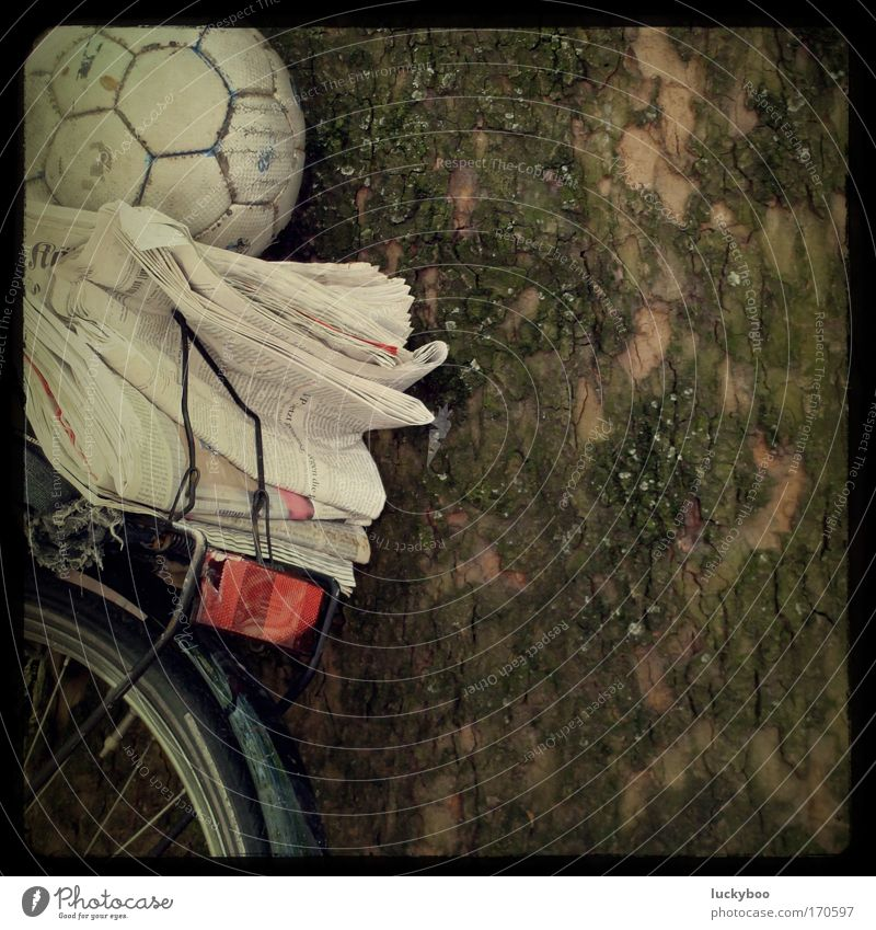 leisure utensil Subdued colour Exterior shot Deserted Copy Space right Day Long shot Leisure and hobbies Playing Foot ball Ball Bicycle Education Print media
