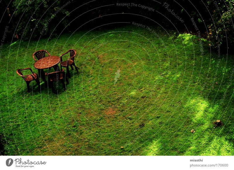 Green. Brown. Colour photo Exterior shot Deserted Day Sunbeam Bird's-eye view Wide angle Chair Garden chair Nature Summer Grass Meadow Loneliness Calm Gloomy