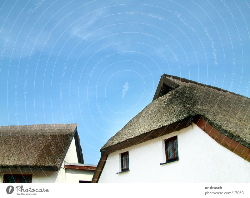 thatched roof Roof Ocean House (Residential Structure) Village Beach Vacation & Travel Architecture Marsh grass Common Reed Baltic Sea Living or residing