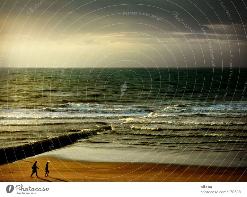 Human being Nature Man Vacation & Travel Ocean Beach Adults Life Emotions Freedom Coast Happy Air Horizon Waves Climate