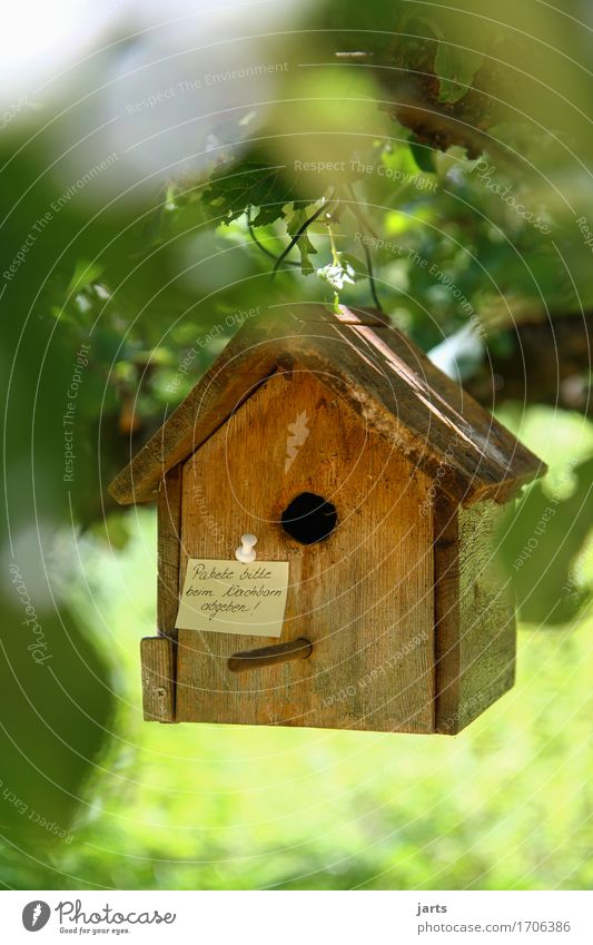 please deliver packages to neighbor II Tree Leaf Forest House (Residential Structure) Hut Hang Living or residing Mail Package Birdhouse Information