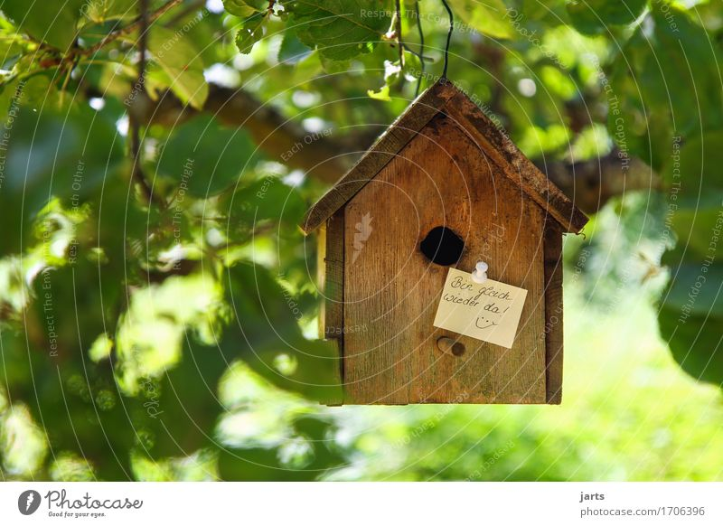 to the info Tree Leaf House (Residential Structure) Hut Signage Warning sign Living or residing Rustic Birdhouse Piece of paper Information Colour photo