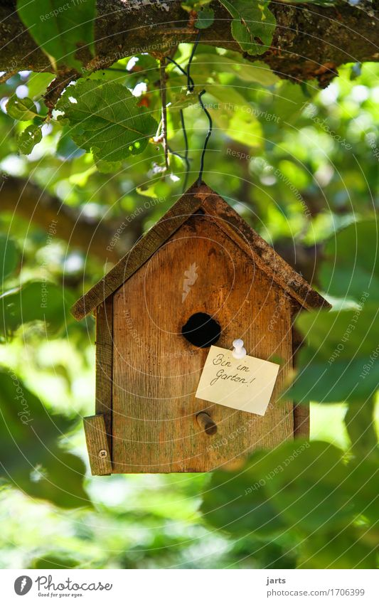 in the garden Beautiful weather Tree Garden Forest House (Residential Structure) Hut Living or residing Piece of paper Information Birdhouse Colour photo