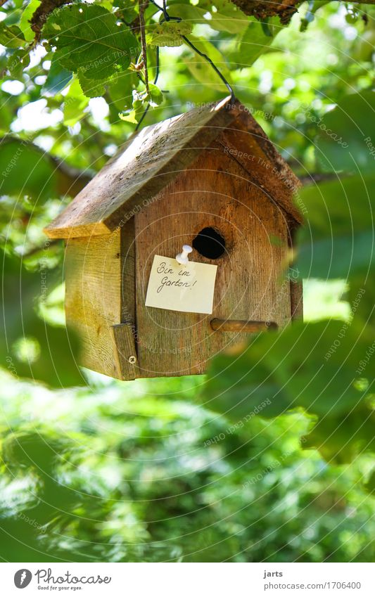 in the garden Tree Leaf Forest House (Residential Structure) Dream house Hut Communicate Nature Piece of paper Information Birdhouse Garden Colour photo