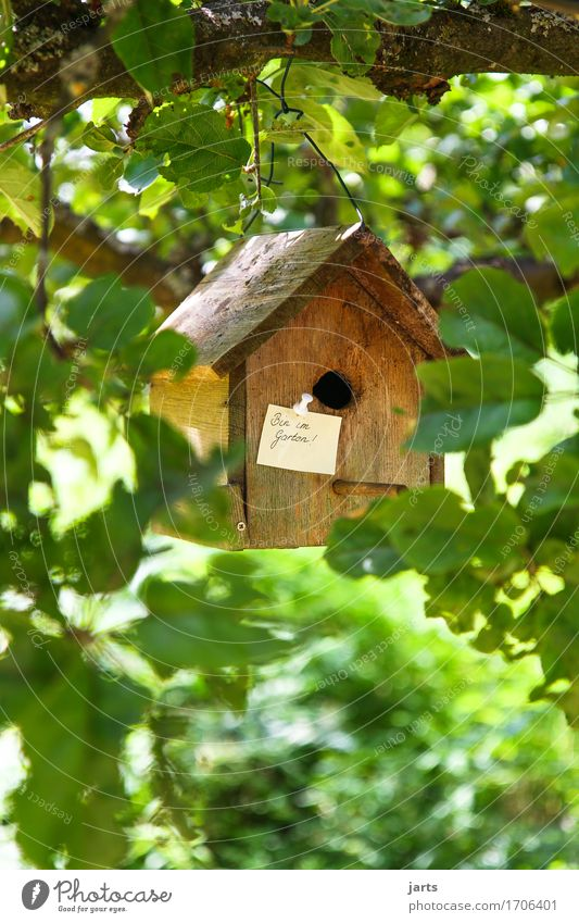 Nature Tree Relaxation Leaf House (Residential Structure) Wood Garden Park Living or residing Leisure and hobbies Break Information Hut Piece of paper Birdhouse