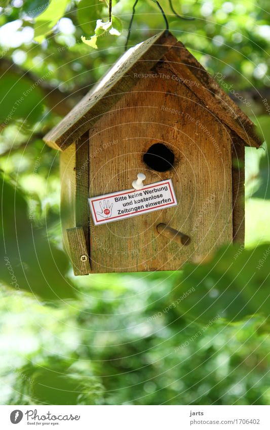 STOP Tree Leaf House (Residential Structure) Hut Mailbox Signage Warning sign Advertising no advertising Birdhouse Colour photo Multicoloured Exterior shot