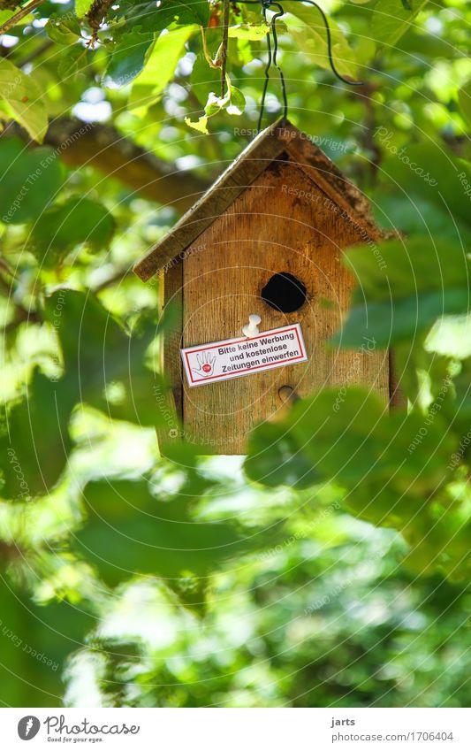 advertising denier Tree Leaf Garden Park House (Residential Structure) Hut Living or residing aviary Birdhouse Wooden house Colour photo Exterior shot Deserted