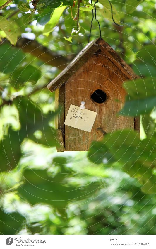 I'm in the garden House (Residential Structure) Dream house Hut Piece of paper Wood Flexible Living or residing Birdhouse Information Garden Wooden house