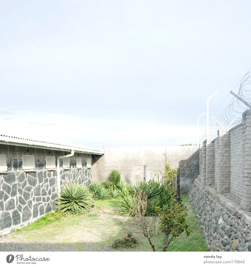 prison yard Colour photo Exterior shot Deserted Copy Space top Copy Space middle Day Light Shadow Contrast Deep depth of field Long shot Flat (apartment) Garden