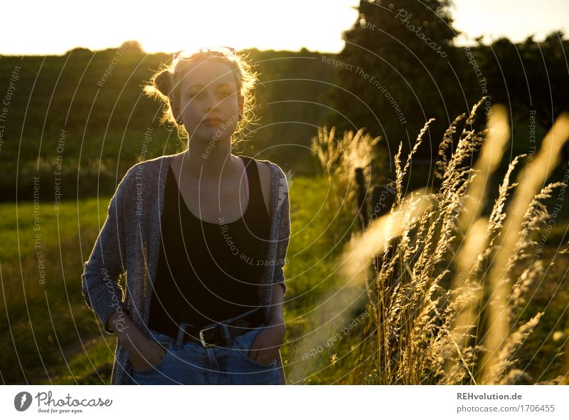 Alexa and the blades of grass. Feminine Young woman Youth (Young adults) 1 Human being 18 - 30 years Adults Environment Nature Landscape Horizon Sun Summer