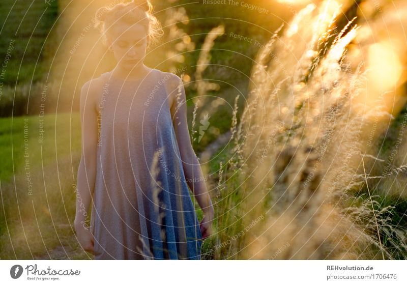 Alexa in the evening light. Human being Feminine Young woman Youth (Young adults) 1 18 - 30 years Adults Environment Nature Landscape Grass Meadow Dress
