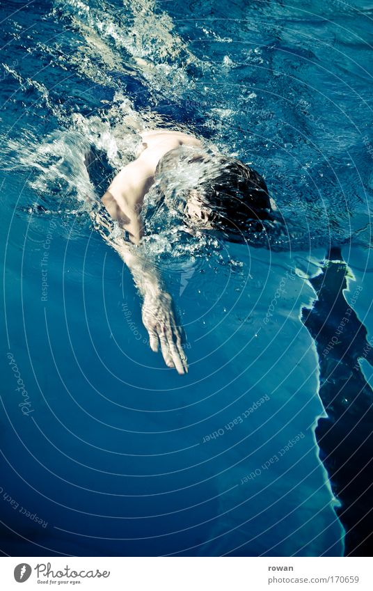 Human being Blue Cold Sports Healthy Swimming & Bathing Masculine Swimming pool Fitness Athletic Competition Endurance Crawl (swim) Young man Endurance training