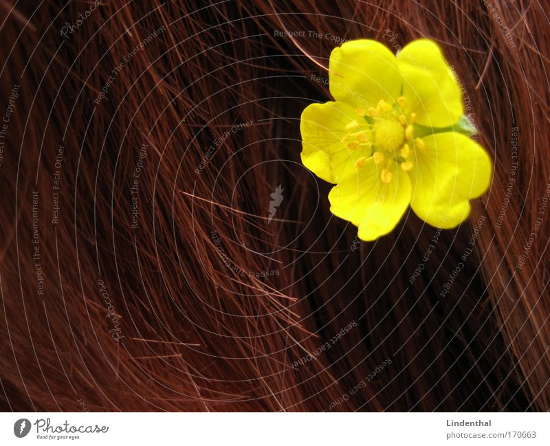 Red Flower Yellow Hair and hairstyles Chic To plunge Ha!