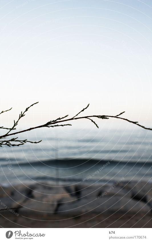 Water Sky Blue Calm Dream Landscape Waves Coast Large Horizon Fresh Infinity Longing Wanderlust Homesickness Sunset