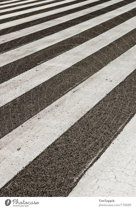 Streets and Stripes Exterior shot Deserted Transport Traffic infrastructure Passenger traffic Gray Black White Pattern Zebra Zebra crossing Pedestrian crossing