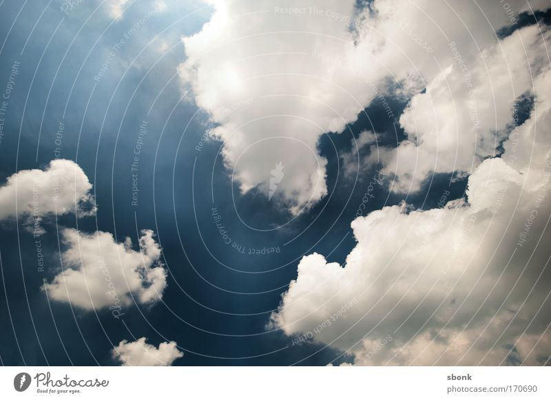 Sky Clouds Environment Air Background picture Weather Climate Copy Space Upward Heavenly Cumulus Skyward Clouds in the sky Cloud formation Sky only