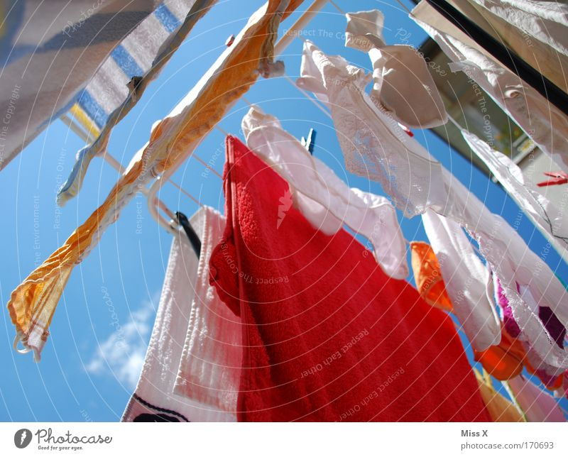 knickers Colour photo Multicoloured Exterior shot Close-up Worm's-eye view Sky Beautiful weather Wind Clothing T-shirt Skirt Stockings Underwear Hang Fresh