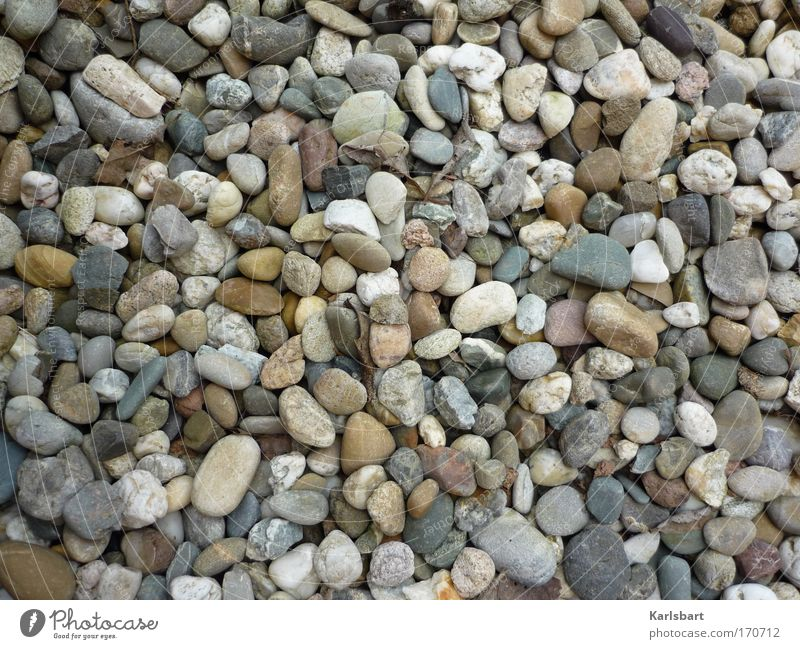 Nature Summer Relaxation Lanes & trails Coast Stone Contentment Background picture Design Esthetic Ground Wellness Craft (trade) Harmonious Gravel Gardening