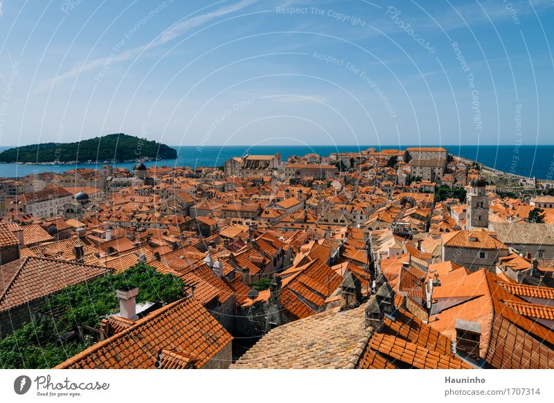 Dubrovnik Xlll Vacation & Travel Sightseeing City trip Summer vacation Water Sky Beautiful weather Plant Ocean Island Croatia Town Port City Downtown Old town