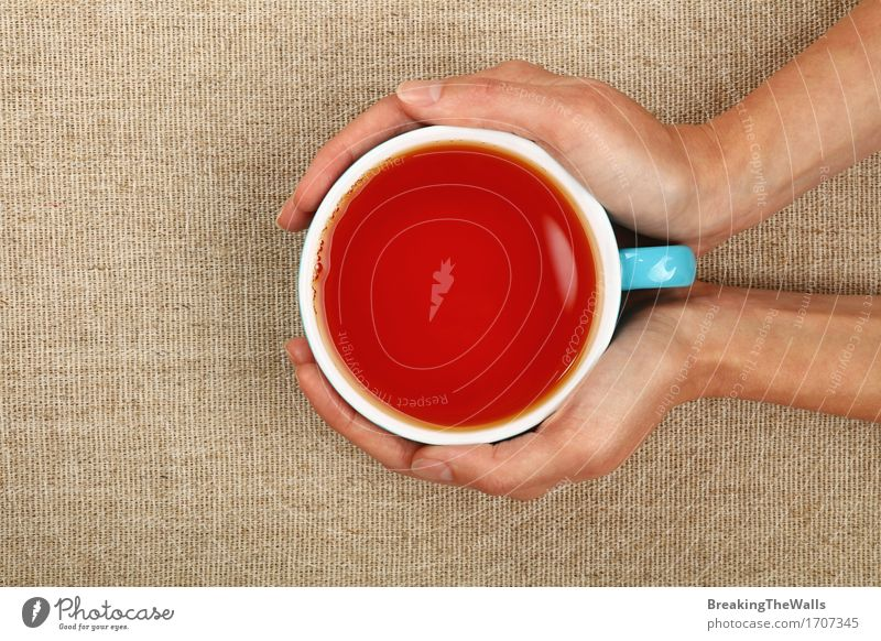 Two woman hands holding big cup of black tea over canvas Woman Healthy Eating Hand Relaxation Red Joy Black Adults Feminine Vantage point Beverage Hot Tradition