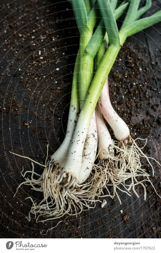 Fresh green garlic Vegetable Herbs and spices Eating Vegetarian diet Nature Leaf Green Garlic spring Organic Leek Raw Odor Ingredients Aromatic allium young