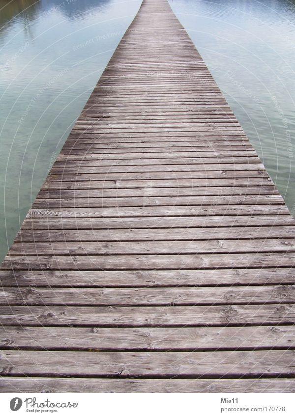 Nature Water Blue Calm Loneliness Autumn Wood Gray Lanes & trails Lake Landscape Line Moody Brown Bridge