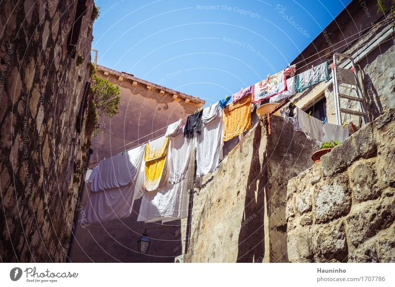 Dubrovnik Vlll Vacation & Travel Tourism Sightseeing City trip Summer Plant Croatia Town Downtown Old town House (Residential Structure) Manmade structures