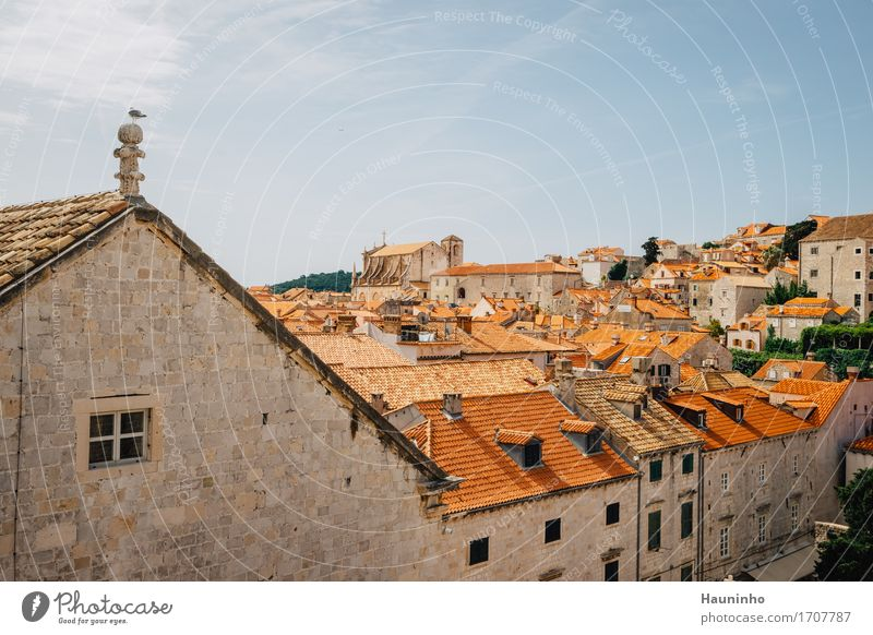Dubrovnik Vll Vacation & Travel Tourism Sightseeing City trip Sky Summer Plant Croatia Town Port City Downtown Old town House (Residential Structure) Church