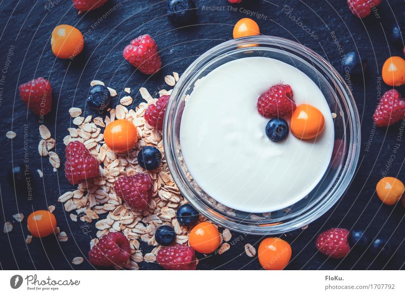 Breakfast with berries from above Food Yoghurt Dairy Products Fruit Grain Nutrition Organic produce Vegetarian diet Diet Bowl Healthy Healthy Eating Fitness