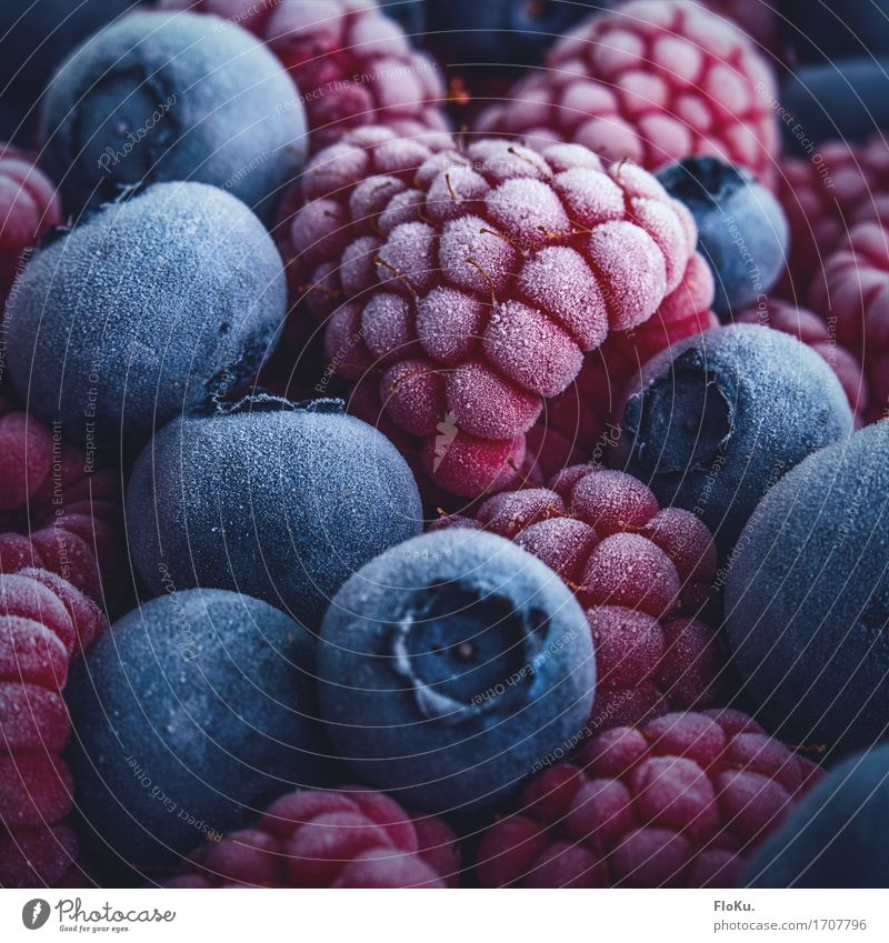 Berries put on ice (and left in freezer) Food Fruit Nutrition Eating Organic produce Vegetarian diet Diet Ice Frost Fresh Healthy Cold Delicious Natural Sweet