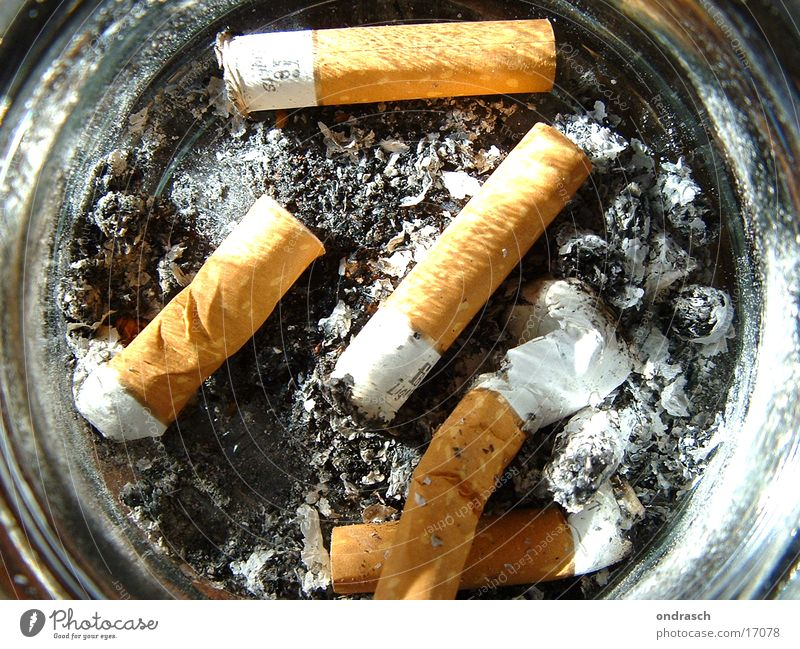 Things Smoking Cigarette Section of image Partially visible Unhealthy Ashes Ashtray Cigarette Butt Filter-tipped cigarette Pulmonary disease Harmful to health Health hazard