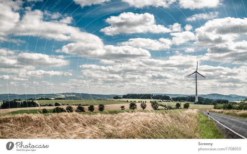 Fluffy and energetic... Energy industry Renewable energy Wind energy plant Nature Landscape Plant Sky Clouds Summer Beautiful weather Grass Bushes Meadow Field
