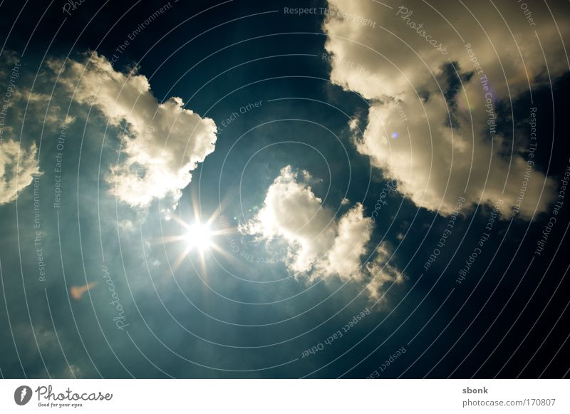 Nature Sky Sun Summer Clouds Air Lighting Weather Environment Climate Back-light Sunbathing Beautiful weather Dazzle Sky only