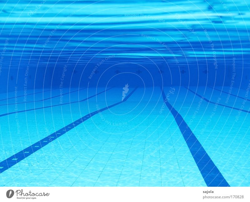 // \ pool - empty Sports Aquatics Swimming pool Elements Water Free Wet Blue Chlorine Lined Track Undulation Waves Undulating Loneliness Empty Tile Colour photo