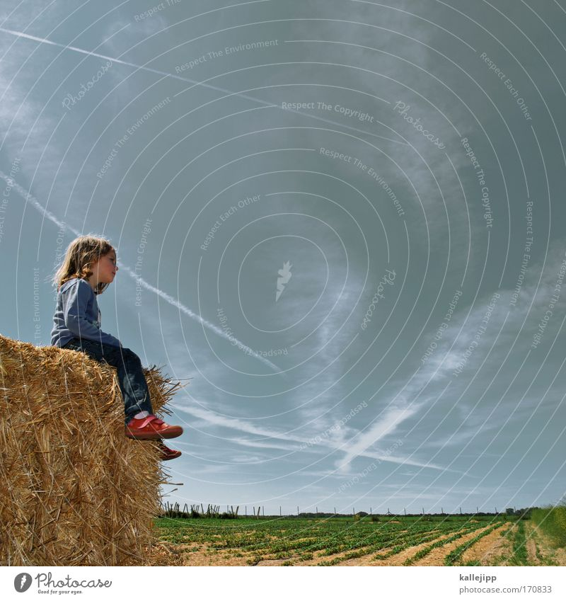 Human being Child Sky Nature Plant Girl Summer Clouds Animal Far-off places Life Environment Playing Landscape Freedom Agriculture