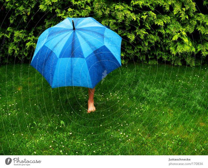 terrible weather Umbrella Umbrellas & Shades Rain Wet Bad weather guard sb./sth. Protection Safety (feeling of) Garden Meadow Lawn Grass stretch spanned